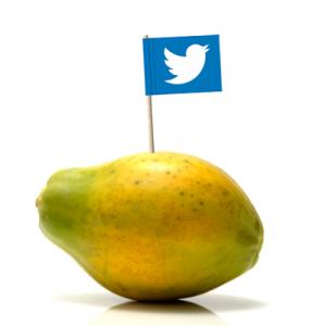 Twitter Werbung - die Papaya unter den Social Media